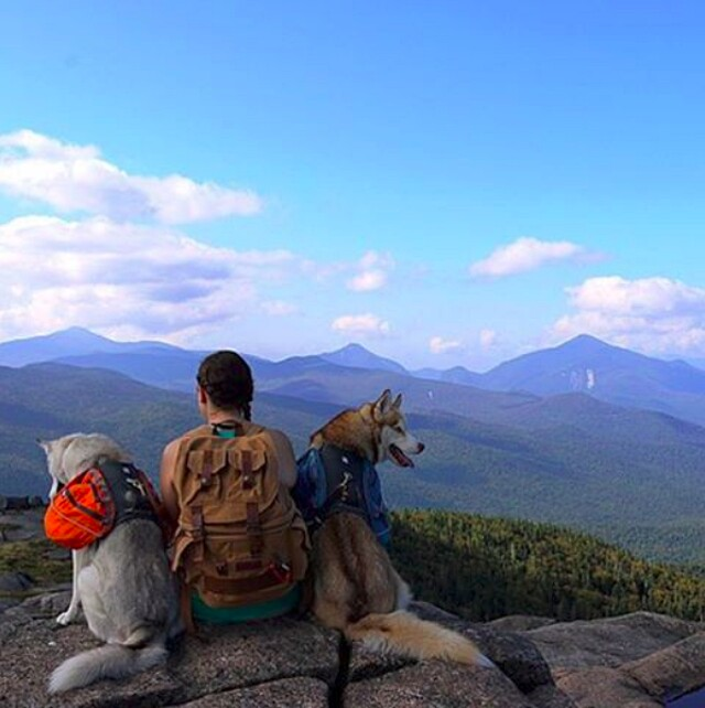 foto-cani-campeggio-trekking-hicking-natura-instagram-camping-with-dogs-03-keb