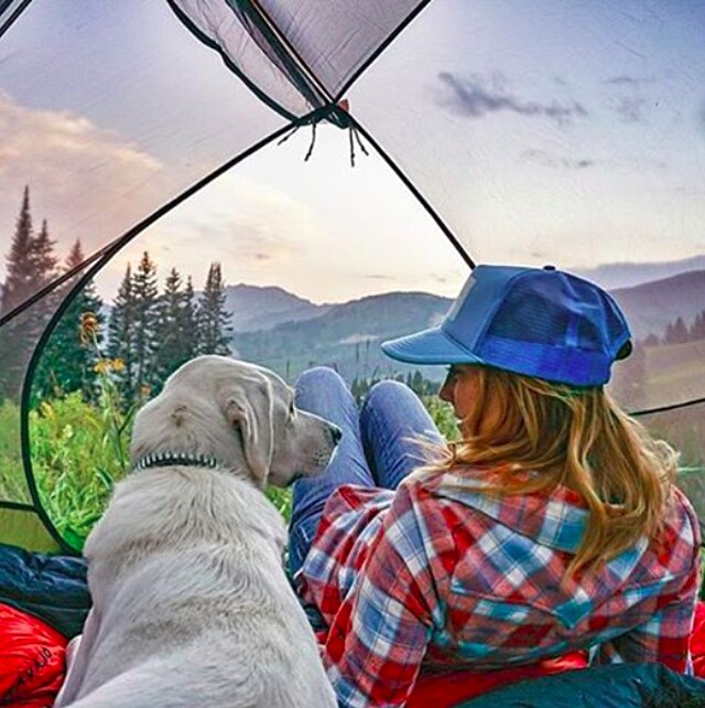 foto-cani-campeggio-trekking-hicking-natura-instagram-camping-with-dogs-06-keb