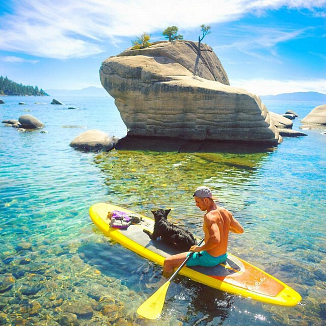 foto-cani-campeggio-trekking-hicking-natura-instagram-camping-with-dogs-22-keb