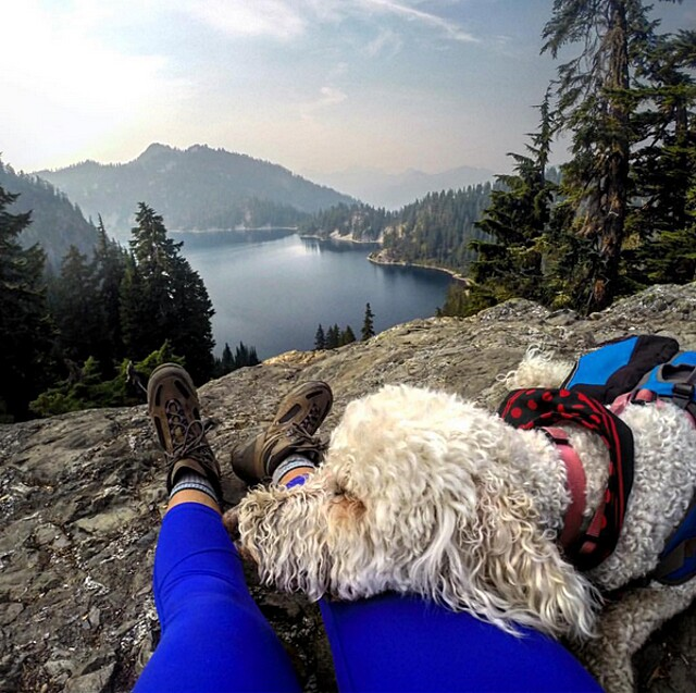 foto-cani-campeggio-trekking-hicking-natura-instagram-camping-with-dogs-24-keb