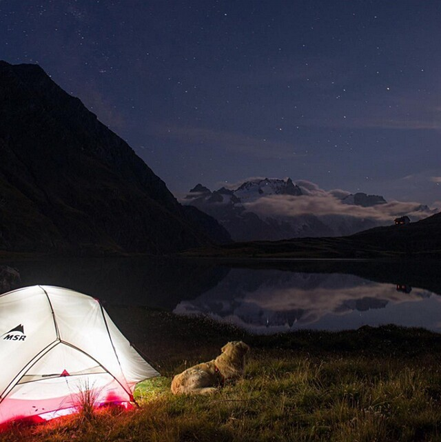 foto-cani-campeggio-trekking-hicking-natura-instagram-camping-with-dogs-29-keb