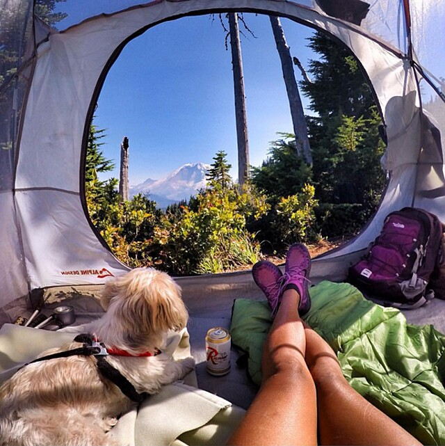 foto-cani-campeggio-trekking-hicking-natura-instagram-camping-with-dogs-31-keb