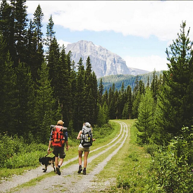 foto-cani-campeggio-trekking-hicking-natura-instagram-camping-with-dogs-32-keb