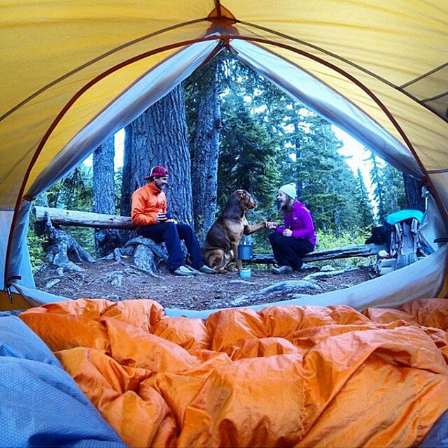 foto-cani-campeggio-trekking-hicking-natura-instagram-camping-with-dogs-33-keb