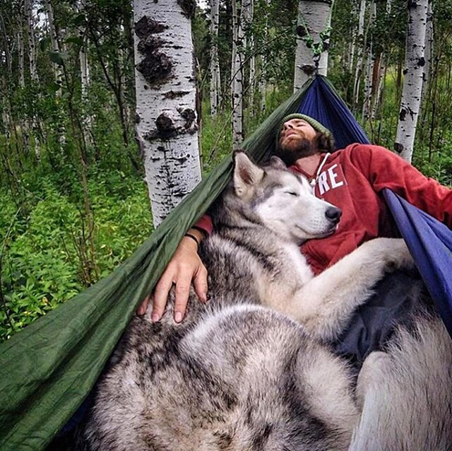 foto-cani-campeggio-trekking-hicking-natura-instagram-camping-with-dogs-36-keb