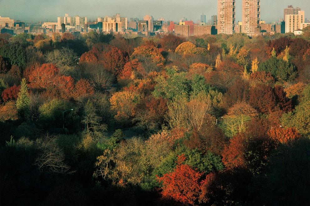 fotografia-new-york-1983-thomas-hoepker-23