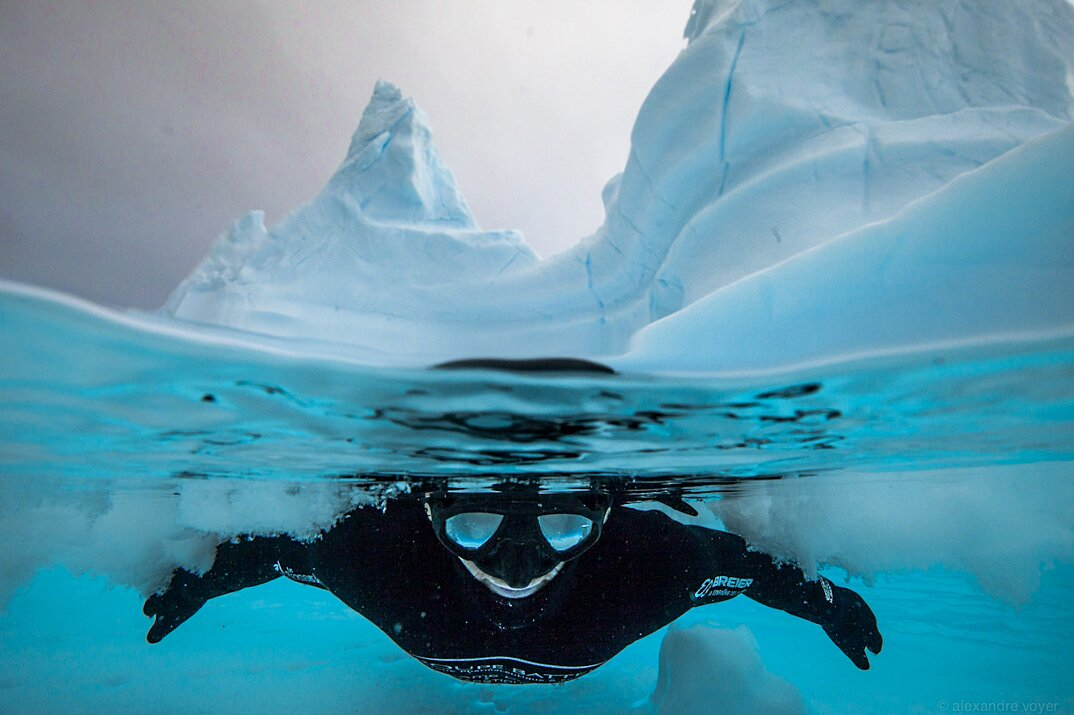 fotografia-subacquea-vita-sottomarina-alex-voyer-roubaud-16