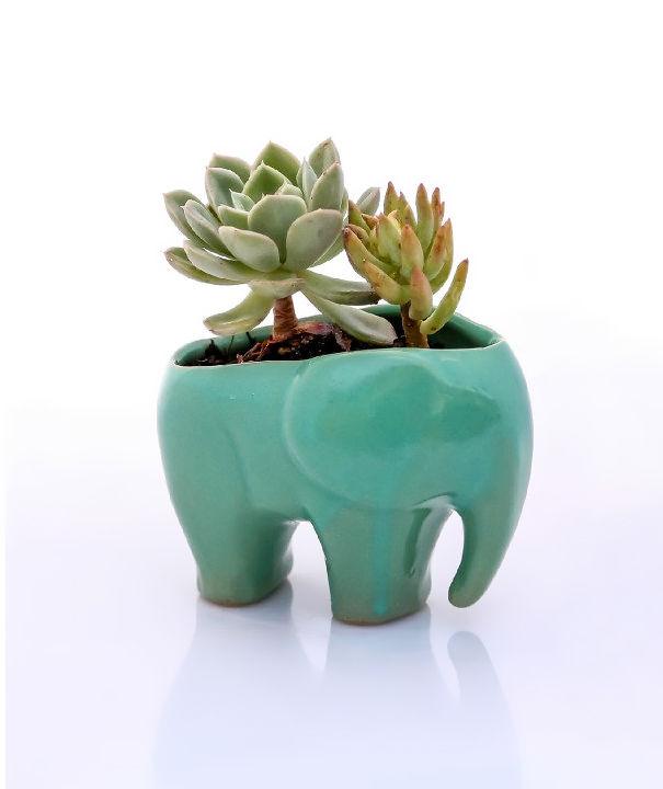 idee-regalo-amanti-elefanti-oggetti-a-forma-di-elefante-41