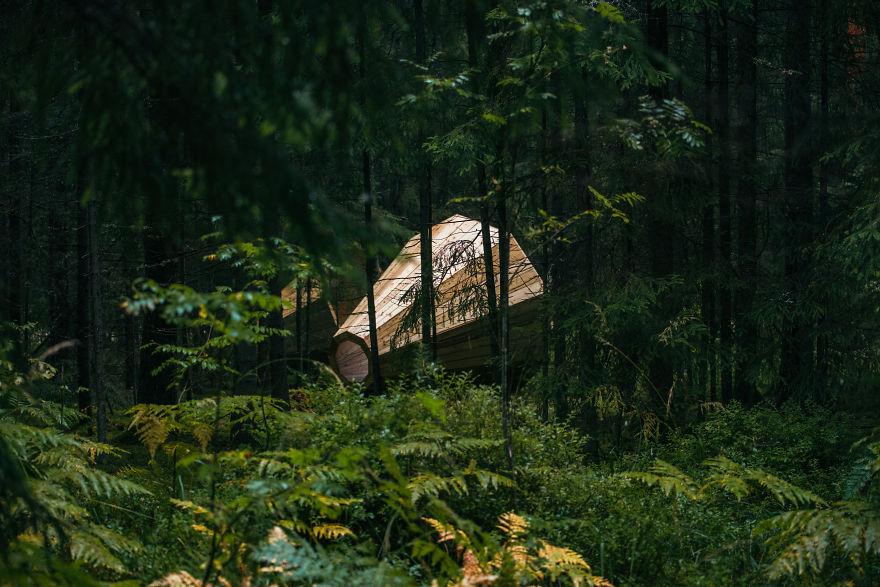 installazione-megafoni-giganti-legno-boschi-estonia-10