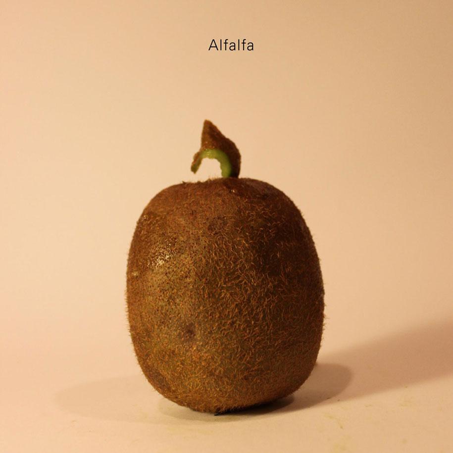 kiwi-intagliati-personaggi-famosi-frutta-anthony-chidiac-23