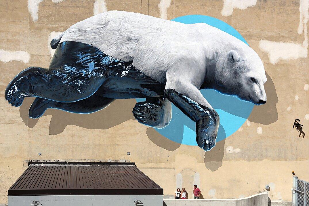 murale-orso-polare-teatro-colosseo-torino-street-art-nevercrew-1-keblog