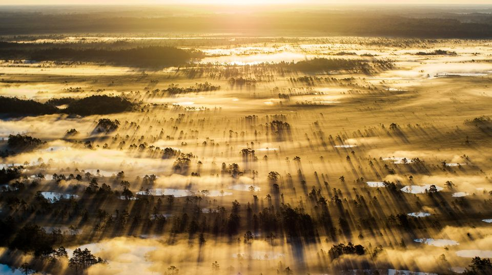 national-geographic-photo-contest-2015-fotografie-09