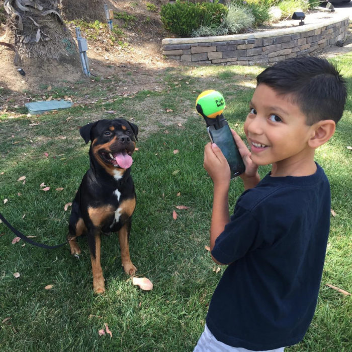 pooch-selfie-con-cane-dog-clever-products-jason-hernandez-1