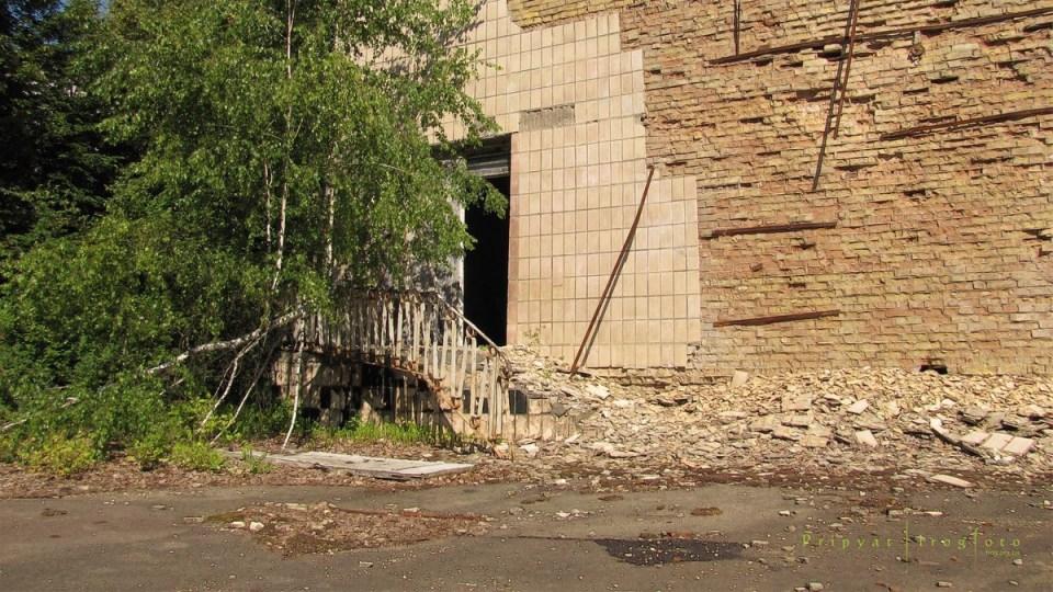 pripyat-chernobyl-natura-vegetazione-animali-radiazioni-02