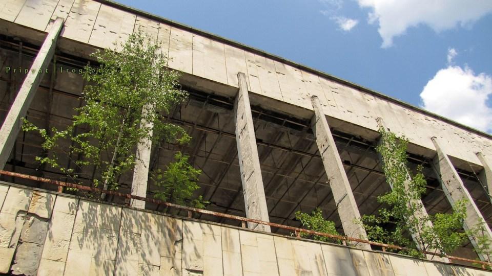 pripyat-chernobyl-natura-vegetazione-animali-radiazioni-08