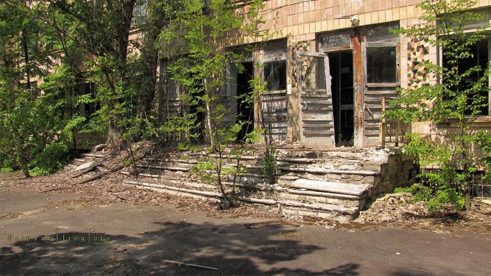 pripyat-chernobyl-natura-vegetazione-animali-radiazioni-13
