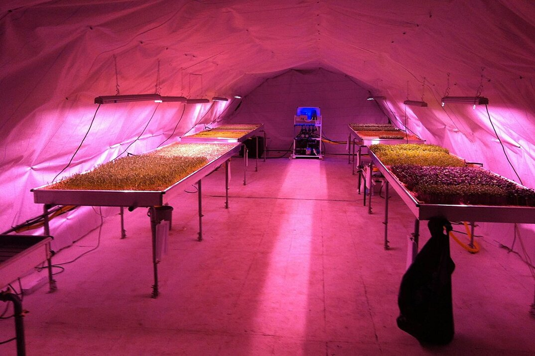 rifugio-antiaereo-londra-serra-idroponica-orto-sotterraneo-growing-underground-3
