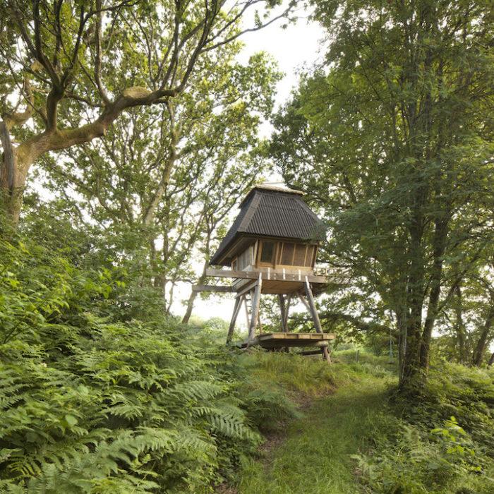 rifugio-creativo-legno-palafitta-bosco-nozomi-nakabayashi-06