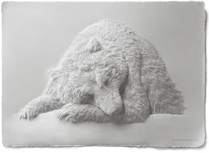 sculture-carta-uccelli-animali-calvin-nicholls-06