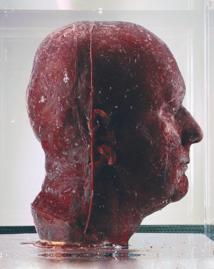 sculture-teste-autoritratti-sangue-marc-quinn-4