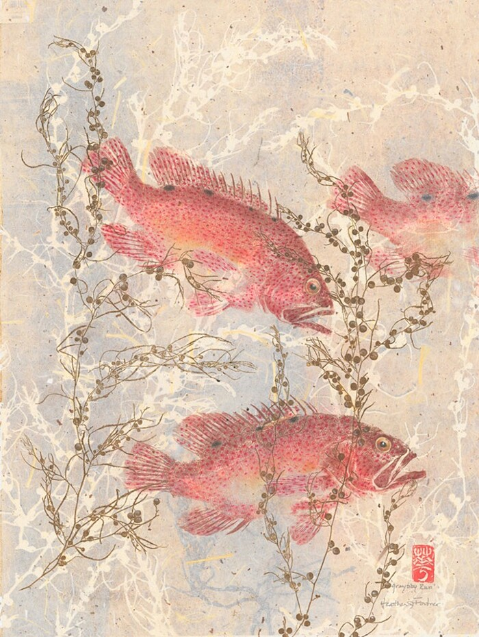 stampa-tradizionale-giapponese-pesci-gyotaku-heather-fortner-04