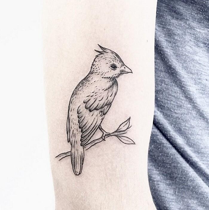 tatuaggi-eleganti-minimalisti-piante-animali-surreali-caitlin-thomas-lucidlines-02