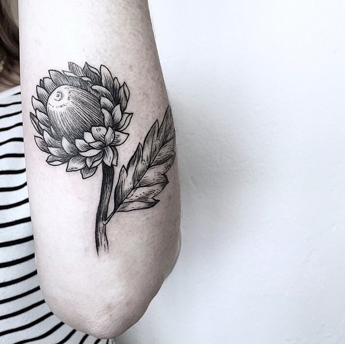 tatuaggi-eleganti-minimalisti-piante-animali-surreali-caitlin-thomas-lucidlines-06