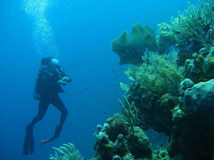 villa-dunbar-rock-honduras-paradiso-caraibi-09