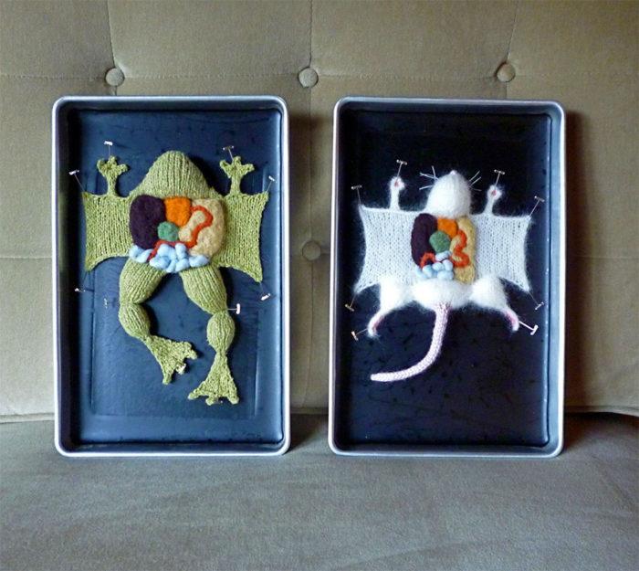 animali-sezionare-anatomia-finti-maglia-emily-stoneking-01
