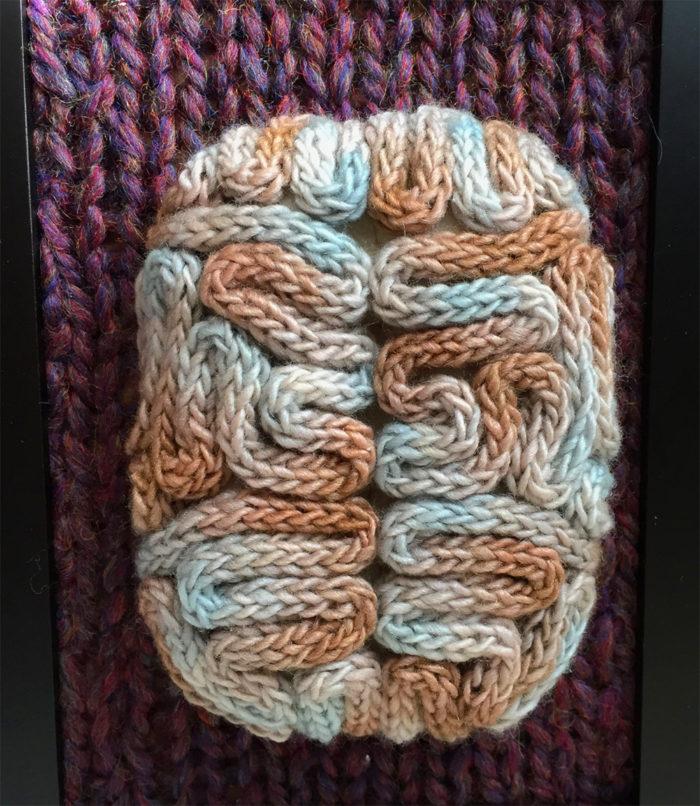 animali-sezionare-anatomia-finti-maglia-emily-stoneking-03