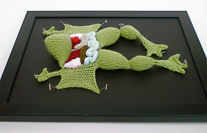animali-sezionare-anatomia-finti-maglia-emily-stoneking-06