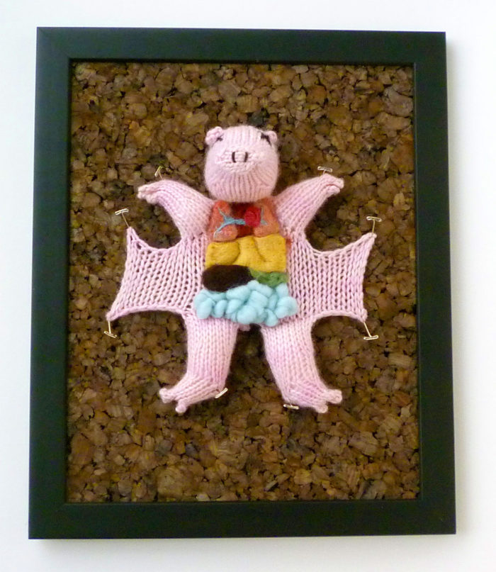 animali-sezionare-anatomia-finti-maglia-emily-stoneking-08