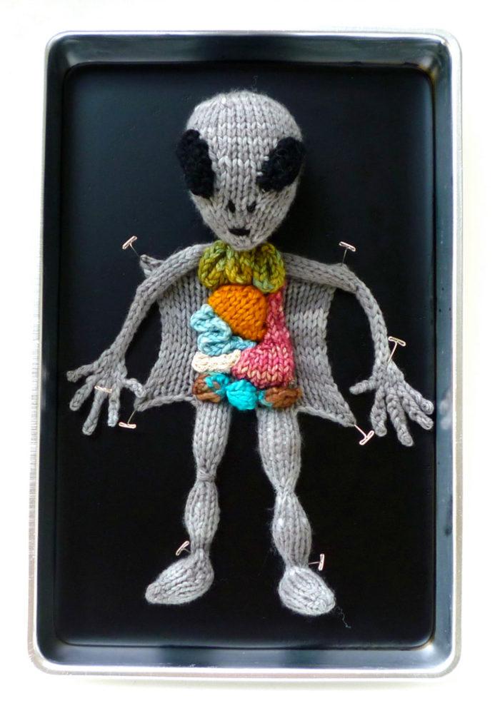 animali-sezionare-anatomia-finti-maglia-emily-stoneking-09