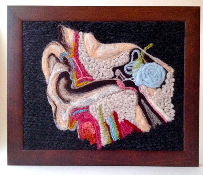 animali-sezionare-anatomia-finti-maglia-emily-stoneking-11