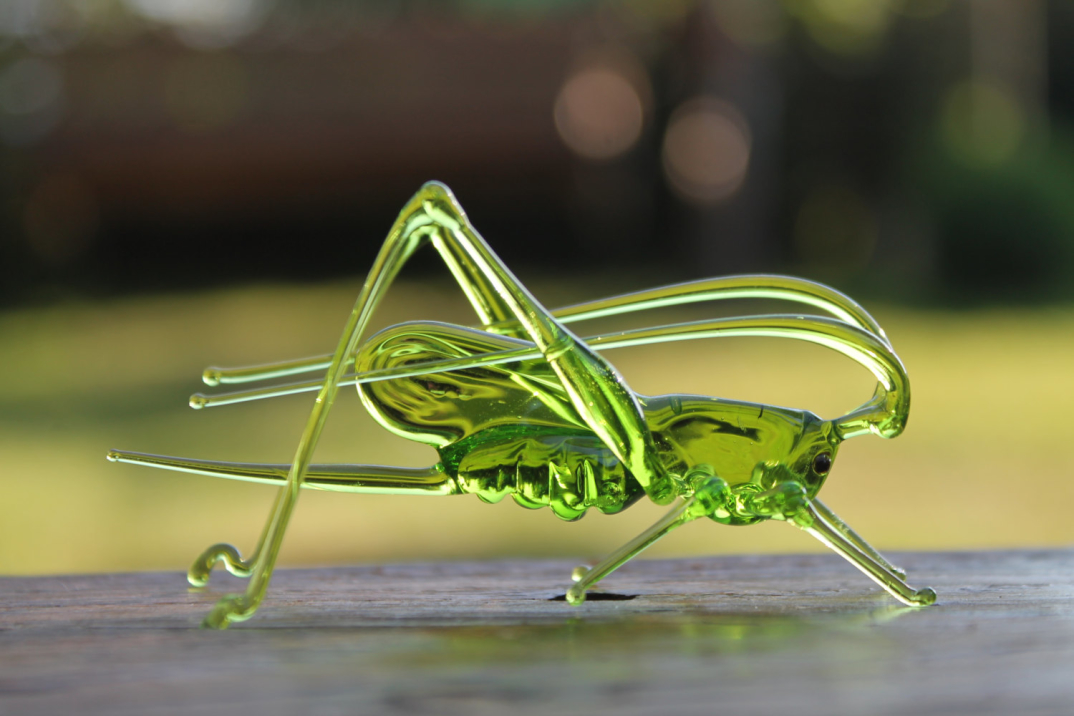 animali-verto-soffiato-artigianato-ucraina-nikita-drachuk-glass-symphony-09