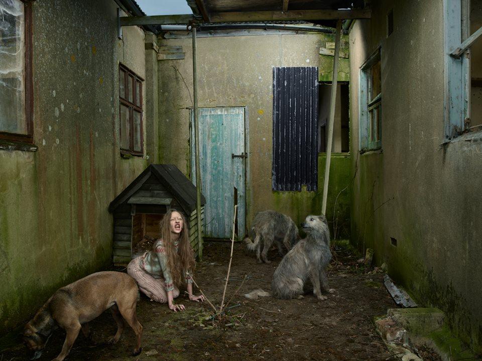 bambini-ferini-animali-selvatici-foto-julia-fullertone-batten-01