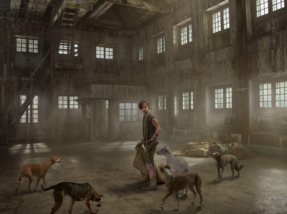 bambini-ferini-animali-selvatici-foto-julia-fullertone-batten-03