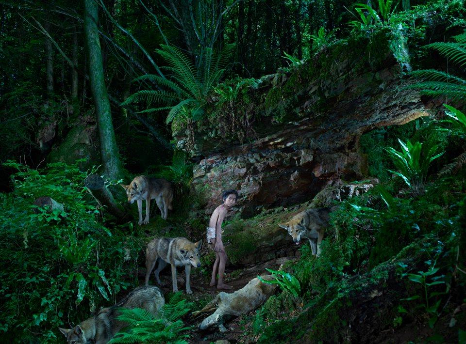bambini-ferini-animali-selvatici-foto-julia-fullertone-batten-04