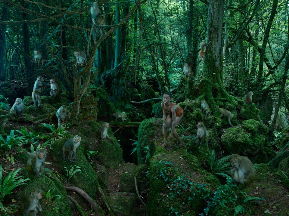 bambini-ferini-animali-selvatici-foto-julia-fullertone-batten-10