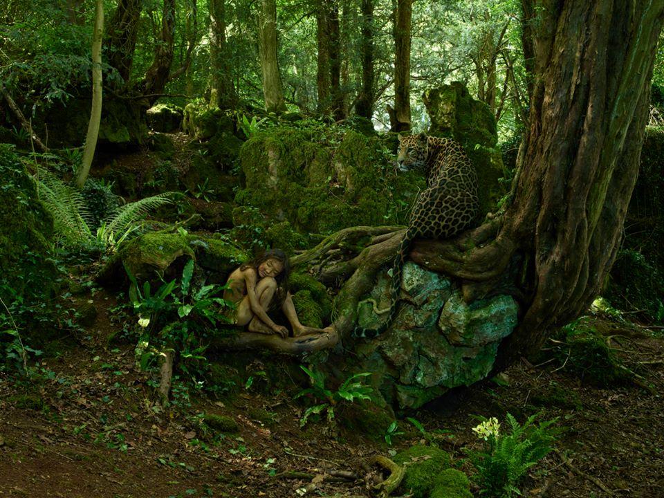 bambini-ferini-animali-selvatici-foto-julia-fullertone-batten-13