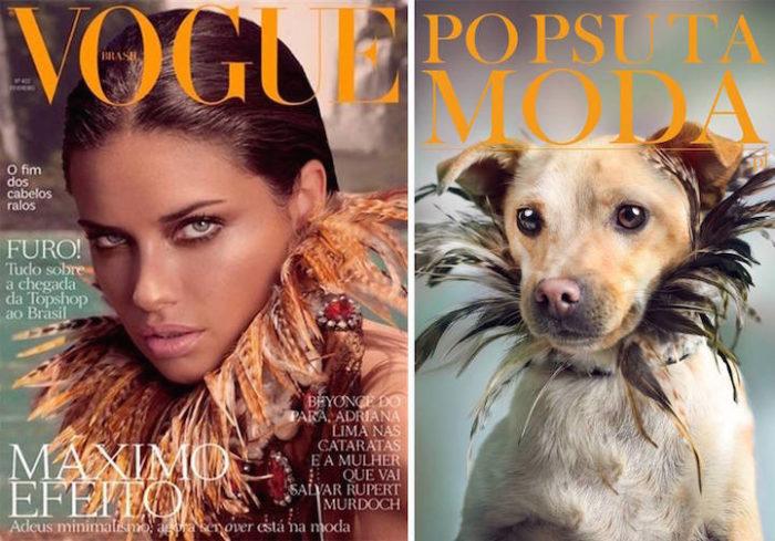 cani-adottare-campagna-foto-compertine-riviste-moda-divertenti-po-psu-ta-moda-01