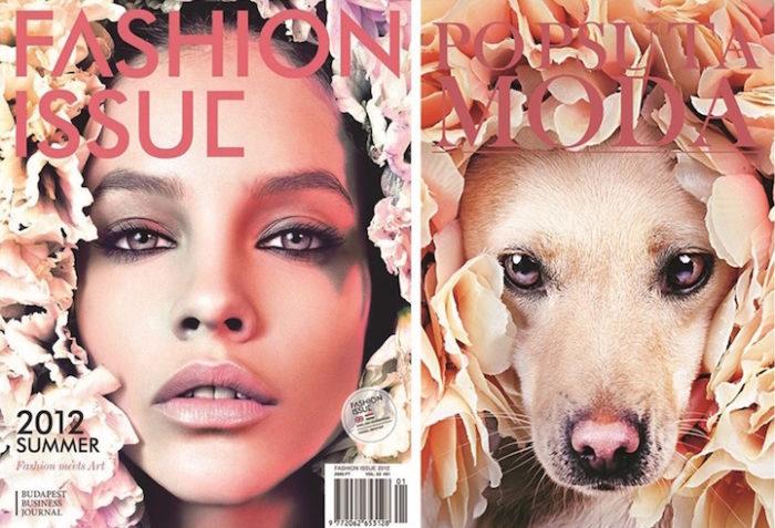 cani-adottare-campagna-foto-compertine-riviste-moda-divertenti-po-psu-ta-moda-02