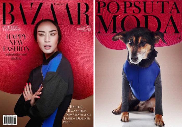 cani-adottare-campagna-foto-compertine-riviste-moda-divertenti-po-psu-ta-moda-05