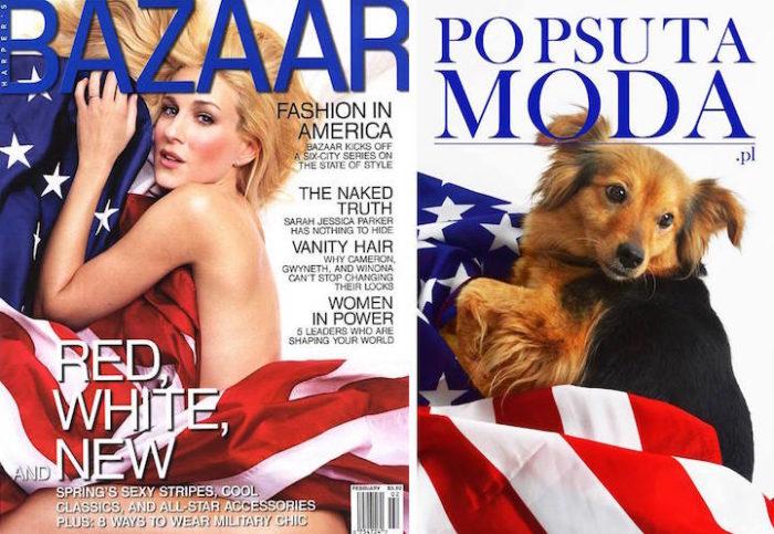 cani-adottare-campagna-foto-compertine-riviste-moda-divertenti-po-psu-ta-moda-06
