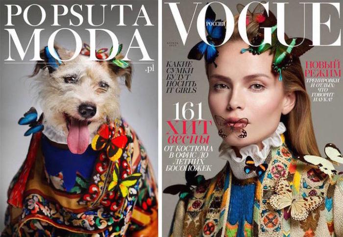 cani-adottare-campagna-foto-compertine-riviste-moda-divertenti-po-psu-ta-moda-07