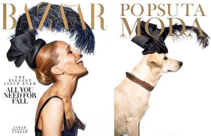 cani-adottare-campagna-foto-compertine-riviste-moda-divertenti-po-psu-ta-moda-10