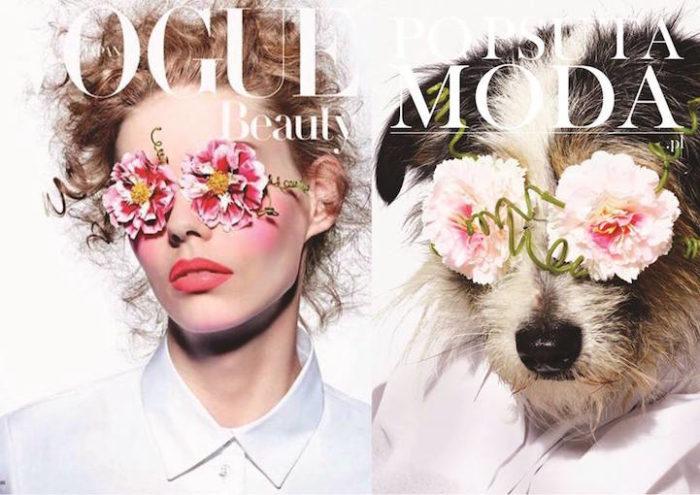 cani-adottare-campagna-foto-compertine-riviste-moda-divertenti-po-psu-ta-moda-11