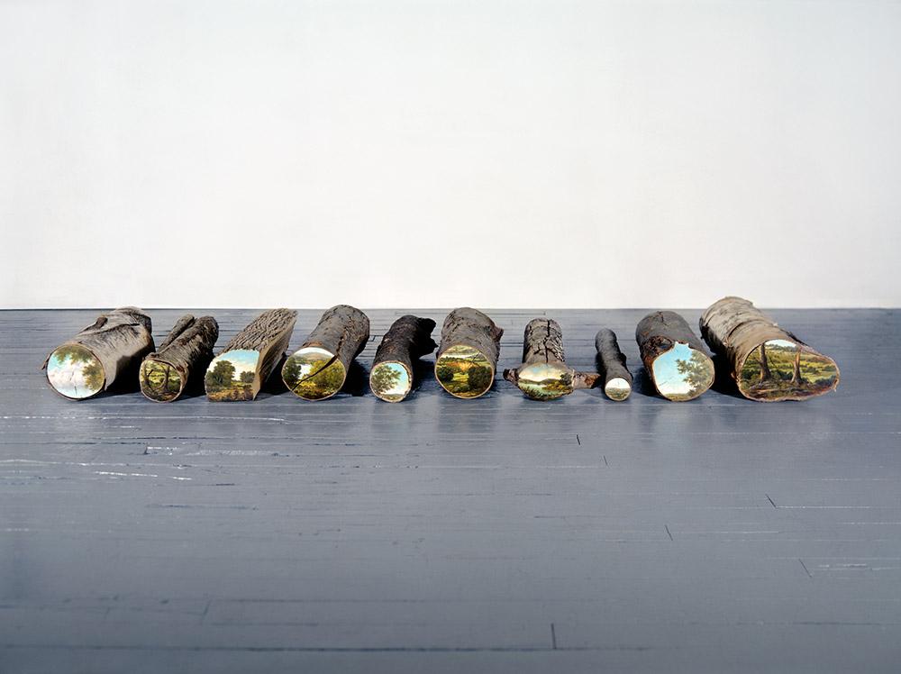 dipinti-tronchi-alberi-tagliati-arte-ambiente-alison-moritsugu-01