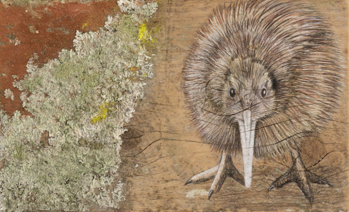 disegni-uccelli-legno-riciclato-john-jepson-1