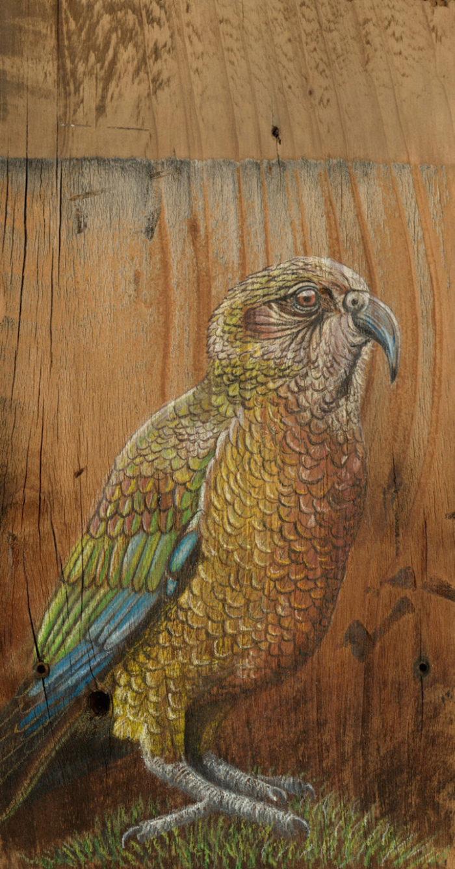 disegni-uccelli-legno-riciclato-john-jepson-3